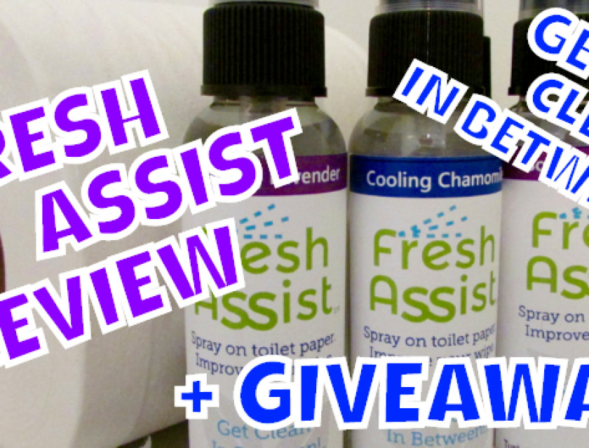 Fresh Assist Review (Get Clean In Between)