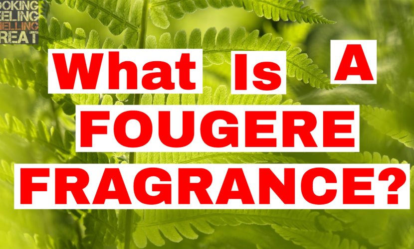 What Is A Fougere Fragrance?