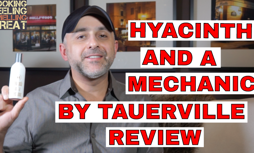 HYACINTH AND A MECHANIC by Tauerville Review